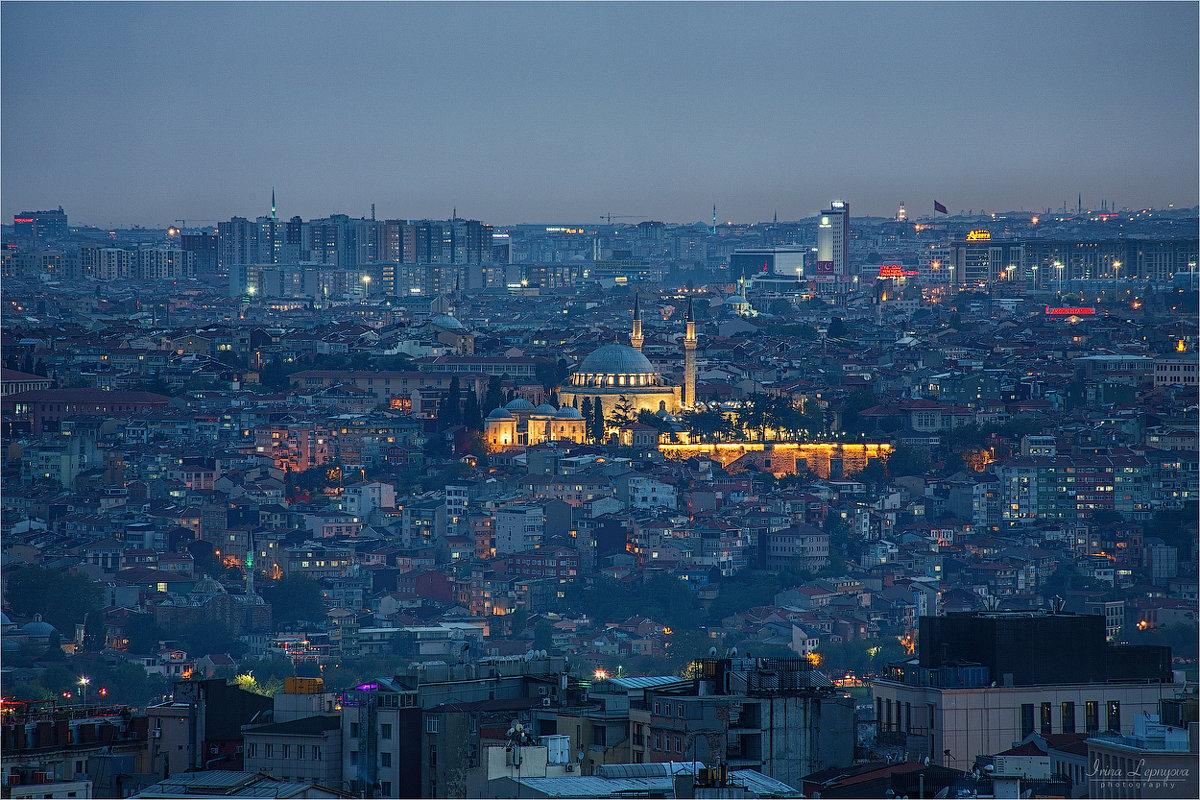 Стамбул вечером - Ирина Лепнёва