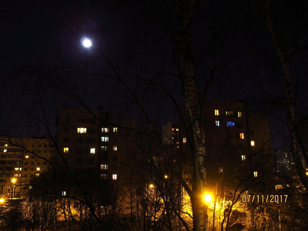 Лунная ночь - Волк-ПРИЗРАК Фомин Виталий