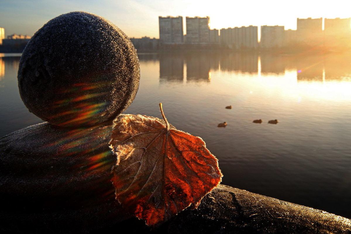 Ноябрь - Михаил Бибичков