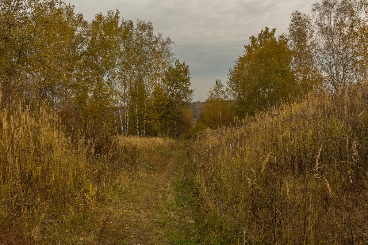 Осенняя дорожка - Александра