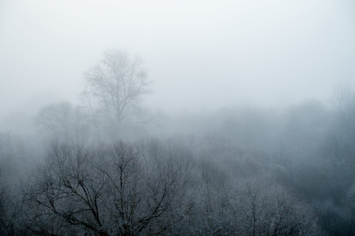 Туман - Dimirtyi