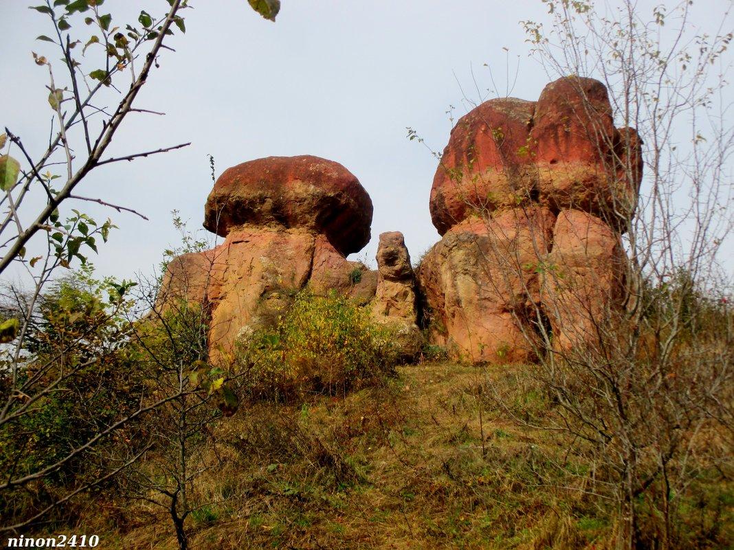 """Природный памятник """"Красные грибы"""" в Кисловодском курортном парке - Нина Бутко"""
