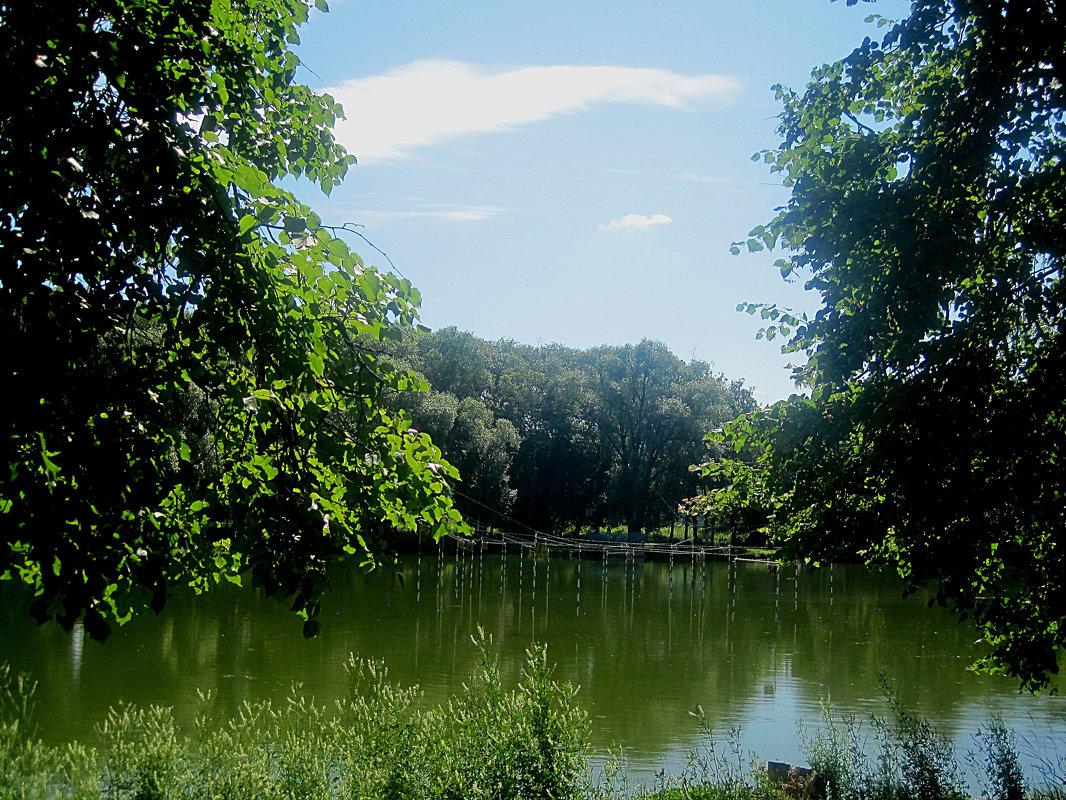 Летом на озере - Елена Семигина