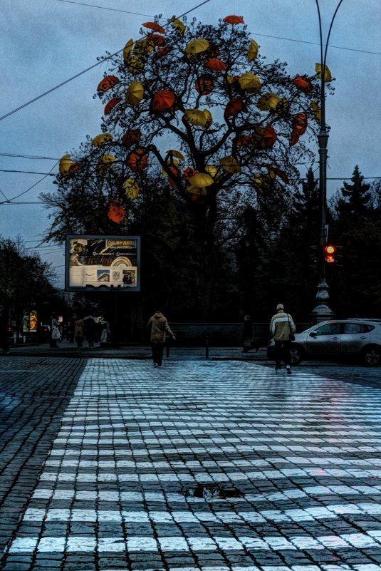 ..в страну осенних зонтов - Ирина Сивовол