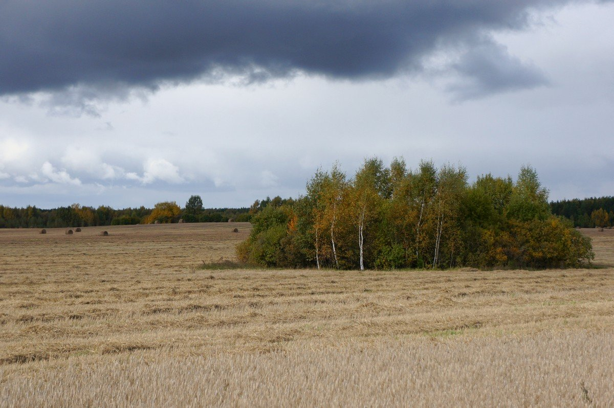 Осенний островок... - марк