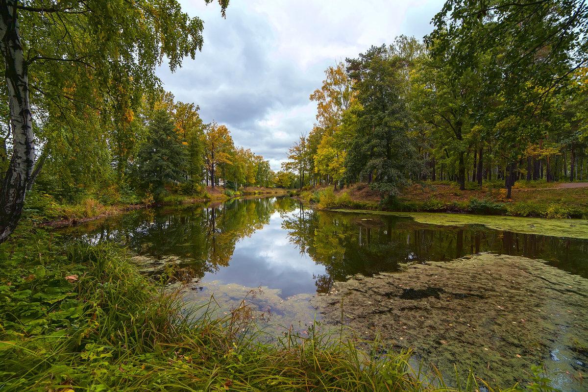 Уголок парка - Владимир