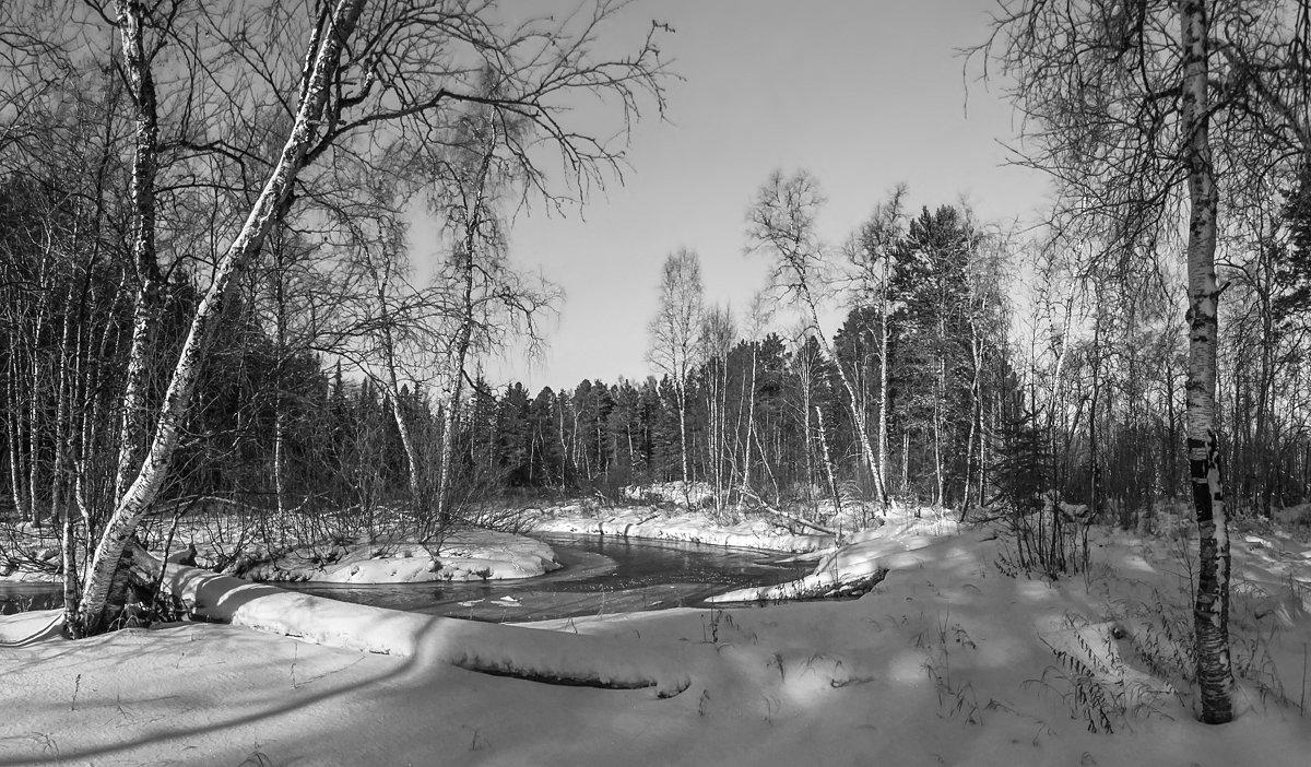 Застывшие тихие воды ручья... - Татьяна .