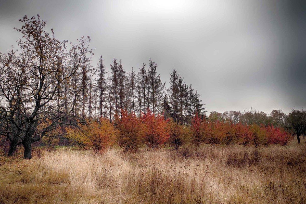 хмурая осень - юрий иванов