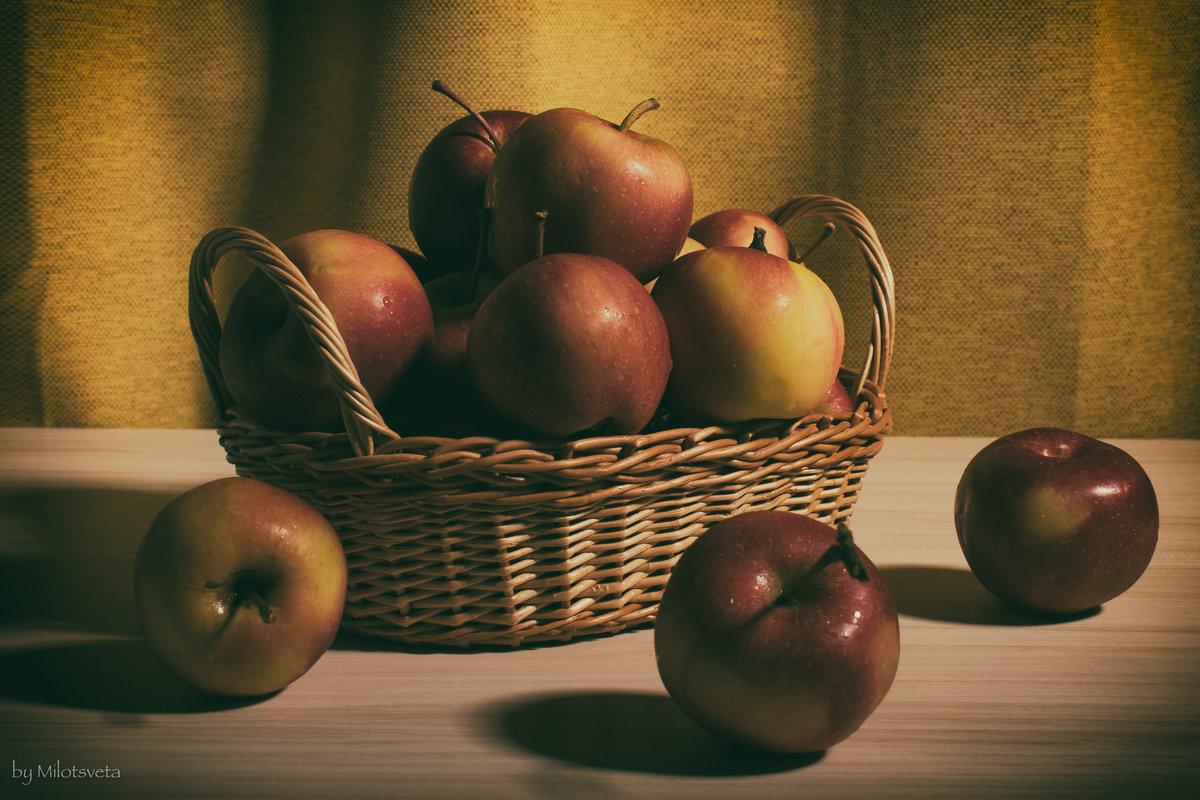 Яблоки - Милоцвета (Александра Баранова)