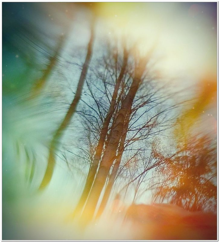 Отражение... - Евгений Кочуров