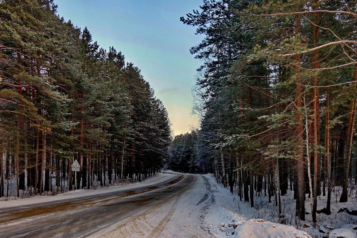 Зимние картинки в Новогодние каникулы. - Пётр Сесекин