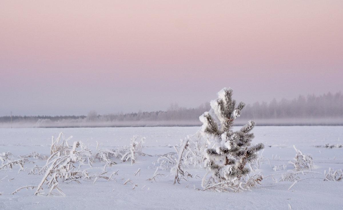 Утро туманное, утро морозное. - Михаил Полыгалов