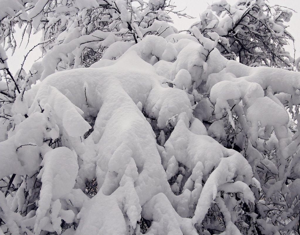 Просто снег! - Лара (АГАТА)