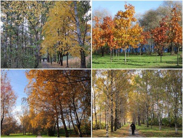 Московская осень - Дмитрий Никитин