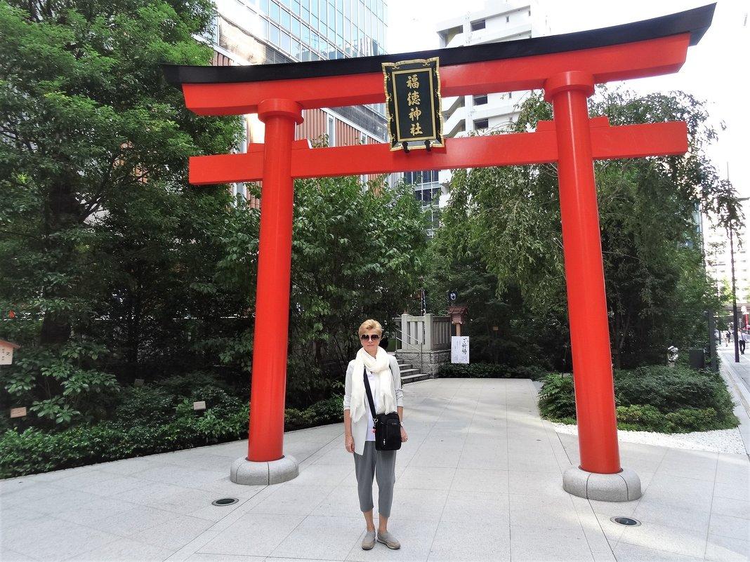 Тории в Токио - Swetlana V