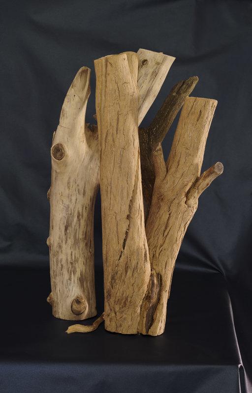 Дерево 2 - Юрий Синягин