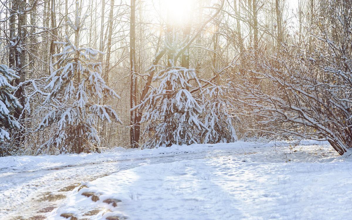 Первый снег. - Борис Руненко