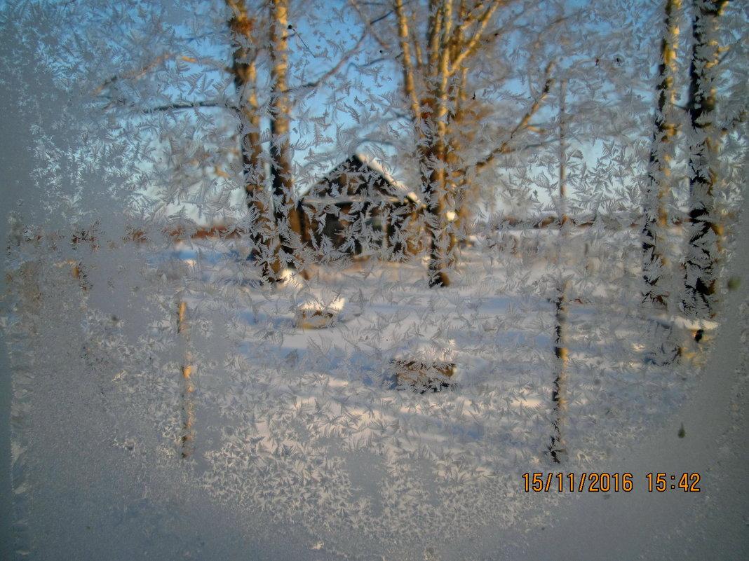 Вид из зимнего окна - Светлана Рябова-Шатунова