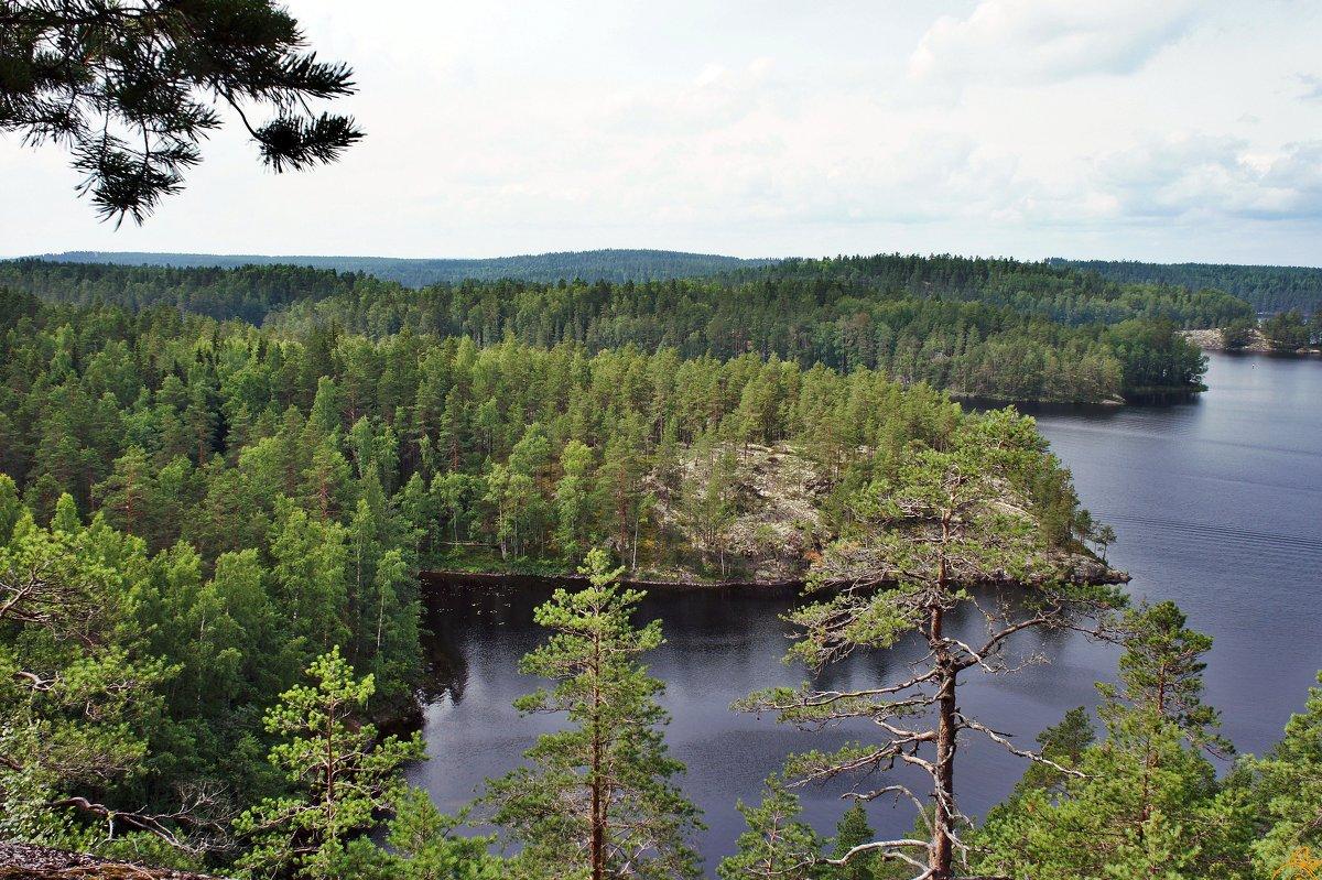 «Маленькая Лапландия» в Южной Финляндии. Озеро Реповеси - Елена Павлова (Смолова)