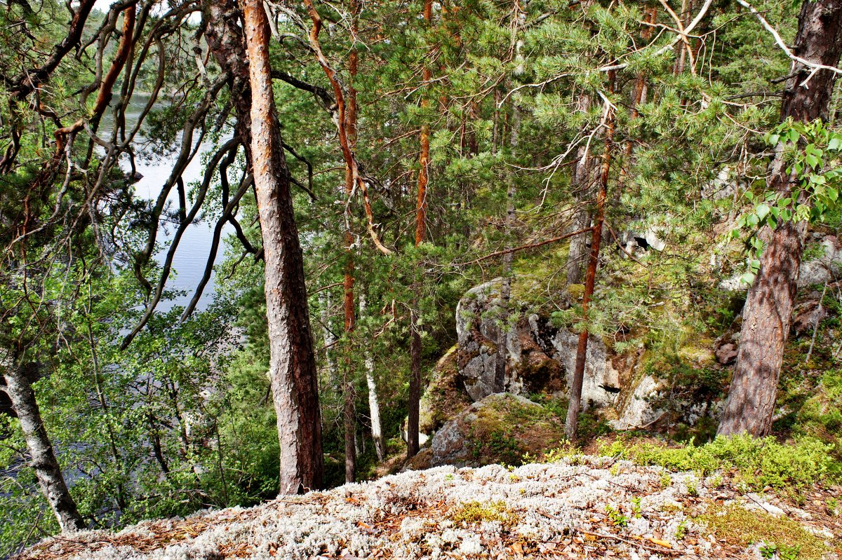 Вид с другого берега пролива Лапинсалми - Елена Павлова (Смолова)
