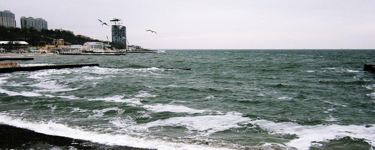 Однажды ты окажешься у моря... - Людмила