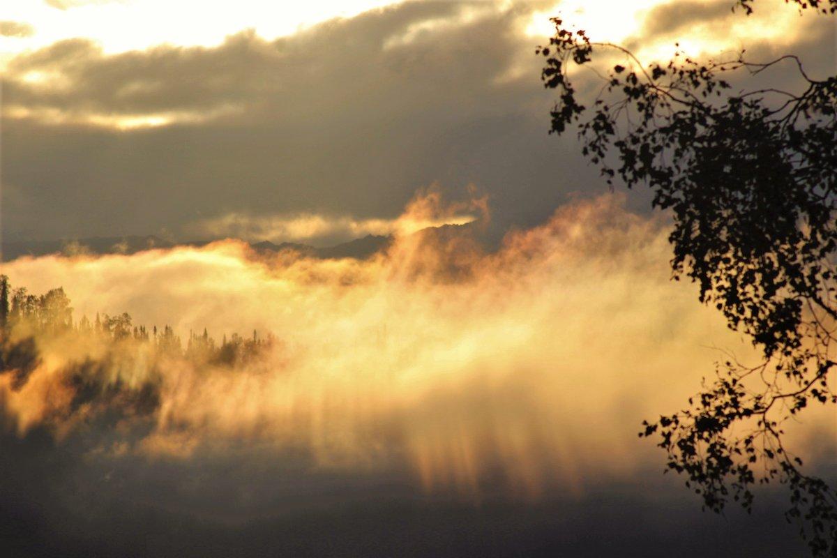 Противление тумана восходящему солнцу - Сергей Чиняев