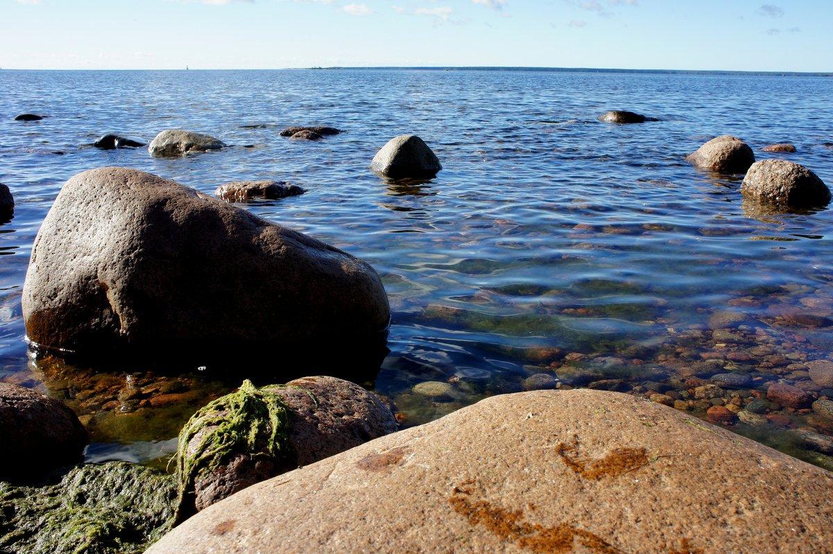 Ермиловская бухта Финского залива - Елена Павлова (Смолова)