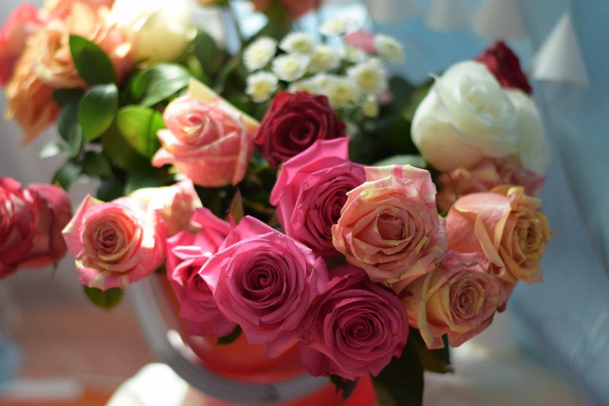 розы - Ксения Жильникова