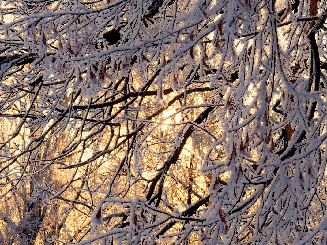 Зимний закат - Ирина Пыхачева
