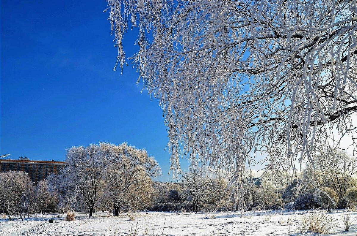 В зимнем очаровании... - Sergey Gordoff