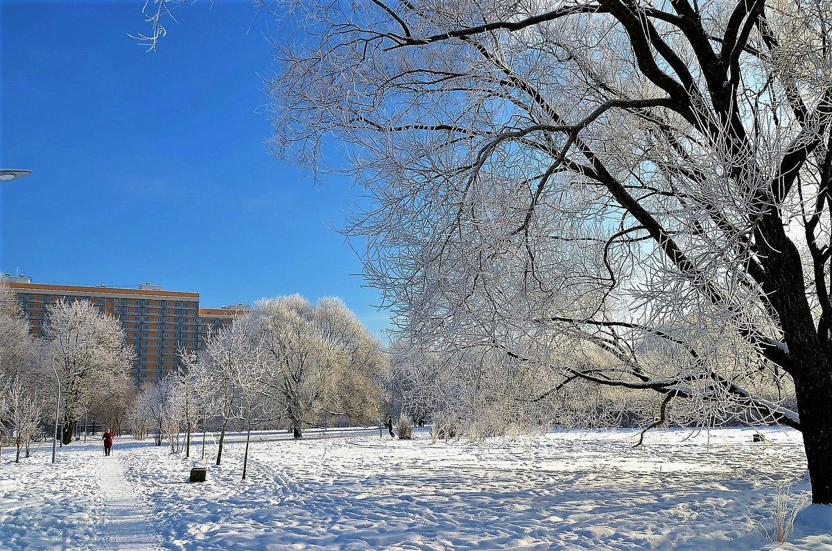 Зимнее одиночество... - Sergey Gordoff