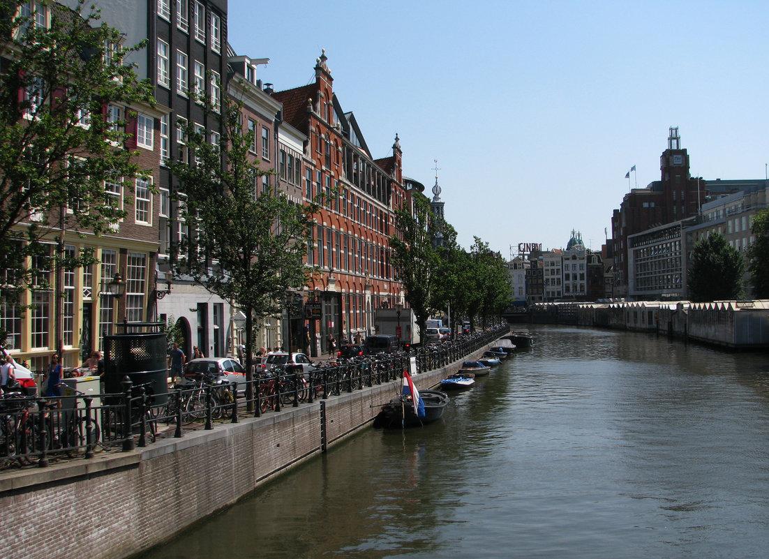 Амстердам - Grey Bishop