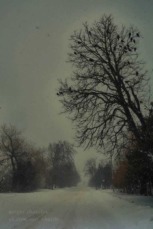 Грачи прилетели - Сергей Шаталов
