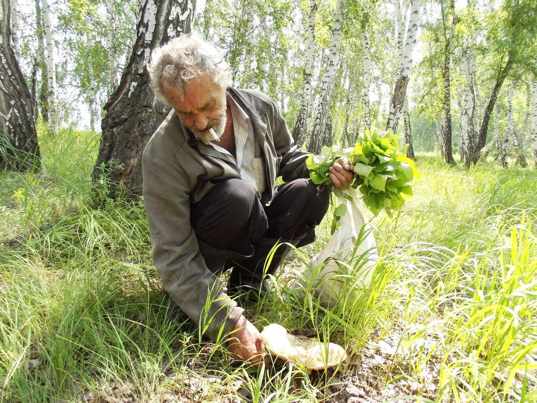 В лесу - Светлана Рябова-Шатунова
