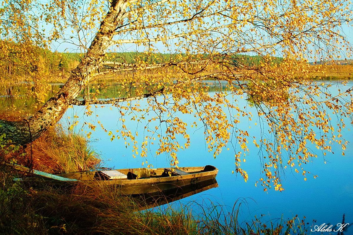 поздняя осень - Александр