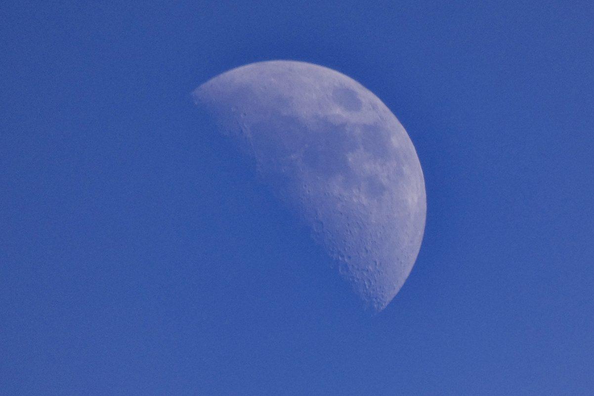 Луна  на  дневном  небе..Лауф  на Пегнитце... - backareva.irina Бакарева