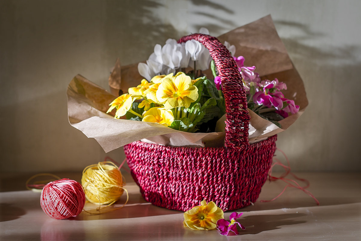 Цветы в лукошке и весенние тени. - Bosanat