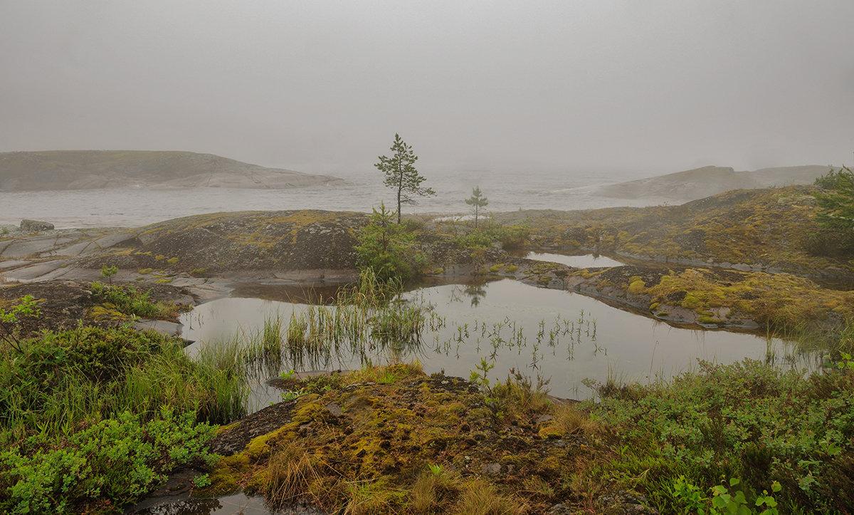 Ладожские туманы 3 - Galina