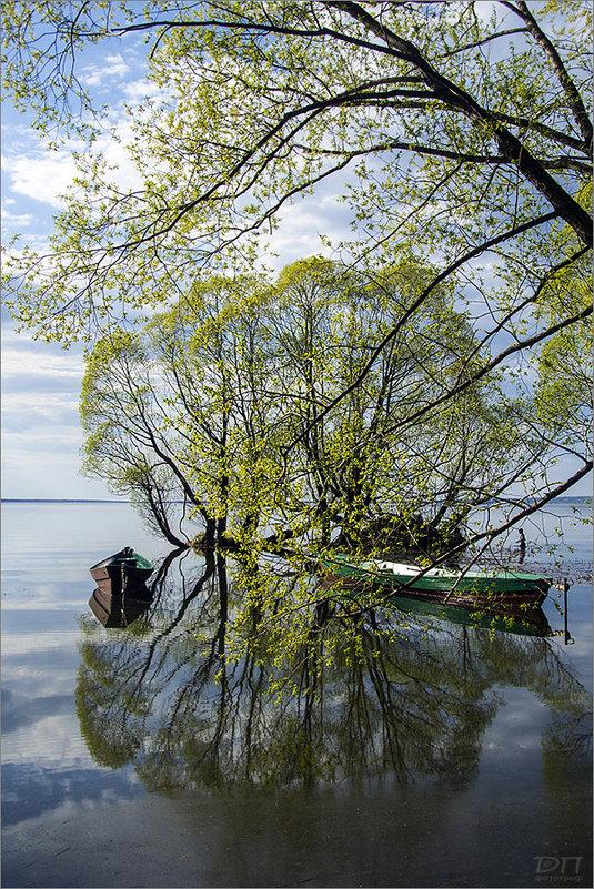 Весна на Плещеевом озере - Дмитрий Потапов