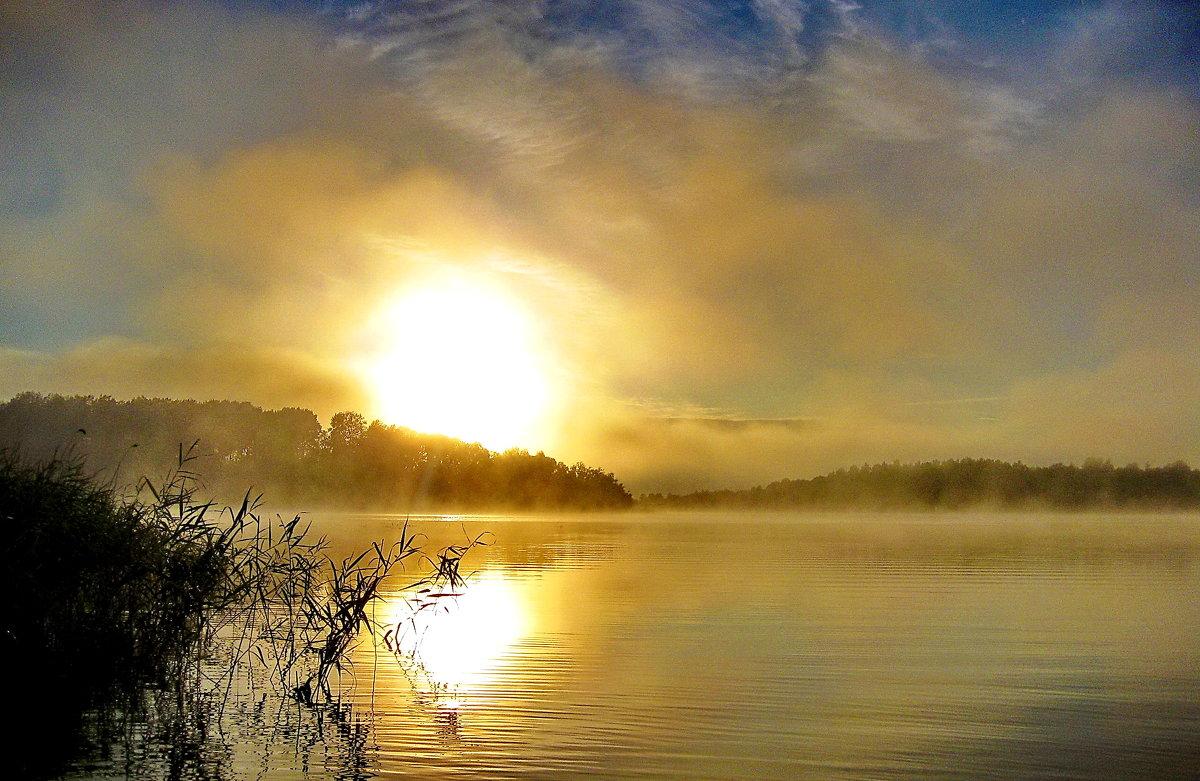 Утренний туман - Александр