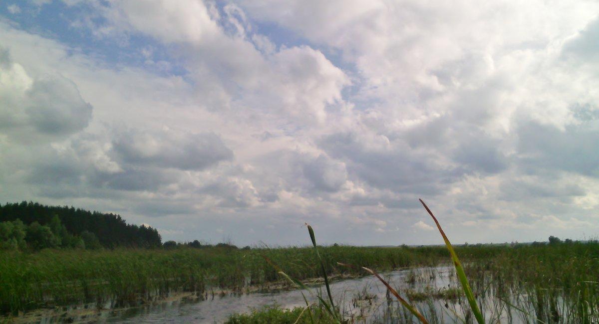 Когда нибудь, мы все станем прекрасными облачками... - Ольга Кривых