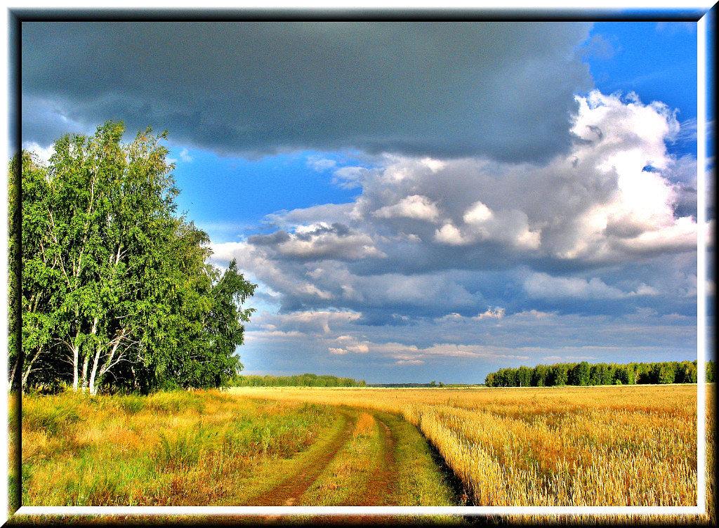 Август - Владимир