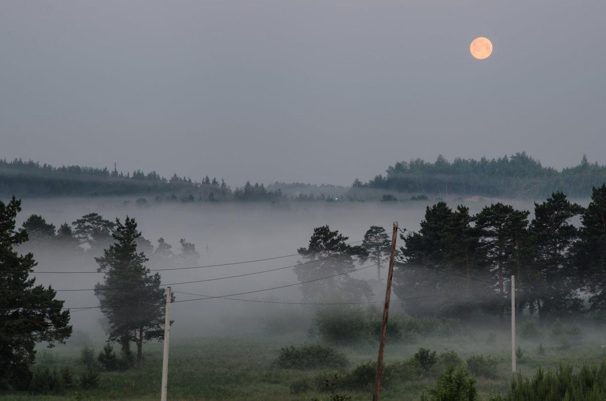 Луна над туманом )) - Игорь Козырин