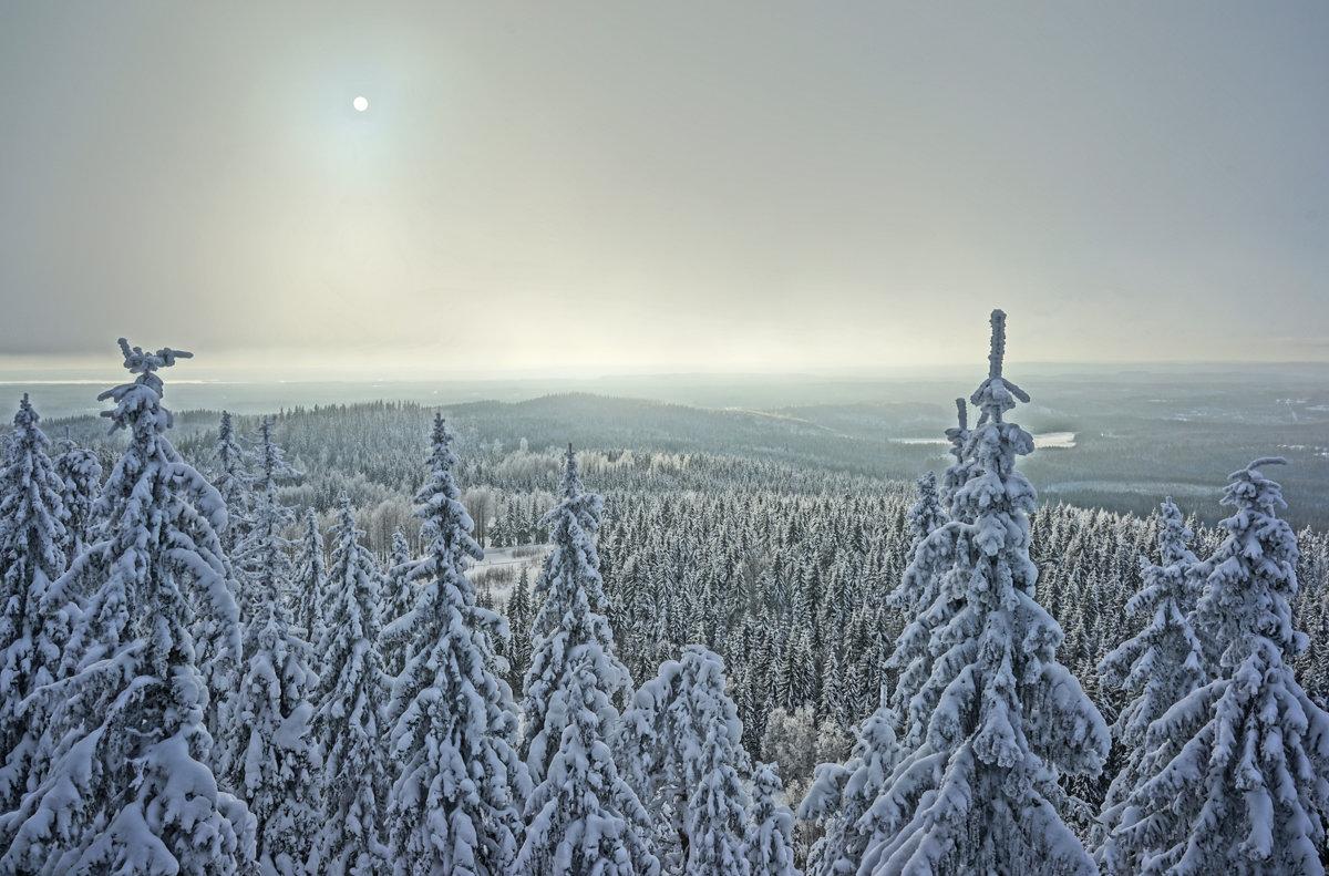 Солнце и сопки. Финляндия - Алексей Саломатов