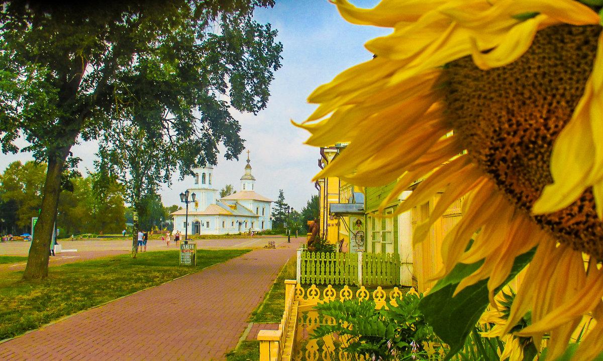 Кремлевская площадь - Юрий Слепчук