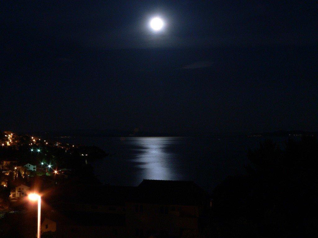 Лунная дородз - vitper per