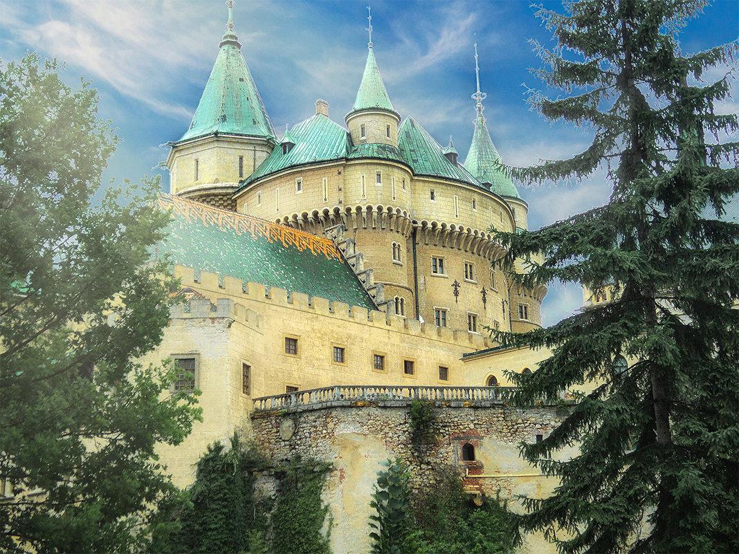 Замок в Бойнице - Сергей Шруба