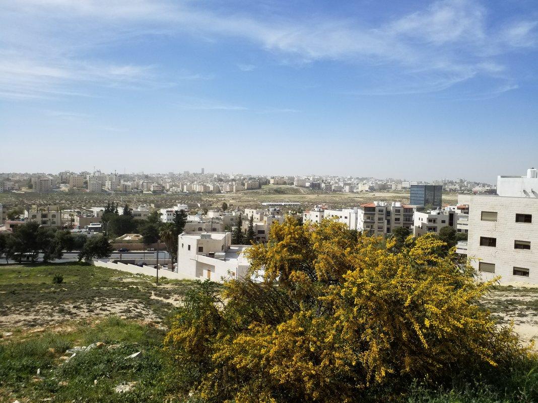 Амман.Современная часть города. - Жанна Викторовна