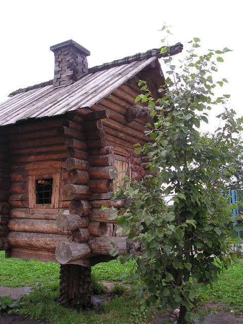 к лесу передом - Димончик