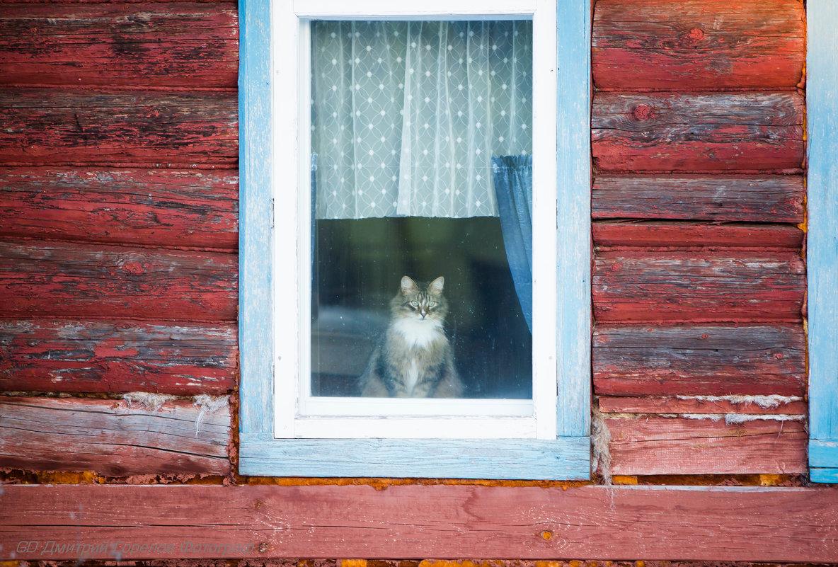 На улице хорошо ,а дома лучше - Горелов Дмитрий